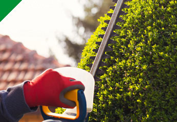 Mantenimiento de jardines | Limpiezas Reyes y Alcántara